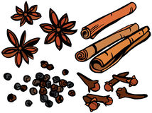 Cool Spices Set Royalty Free Stock Images