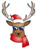 Cool stag  Christmas edition Stock Image