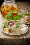 Cool summer tea with mint and ice cubes in a Royalty Free Stock Photography