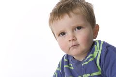 Cool Toddler Boy portrait Royalty Free Stock Photo