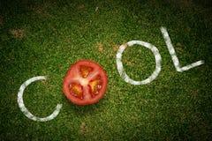 Cool tomato Stock Photos