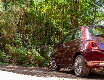 Cool view from a fiat 500 in canary forest stock photos