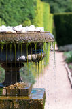 Cool water flowing from an old antique fountain Stock Photography