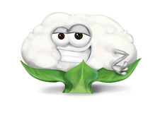Cool white cauliflower cartoon character with half-open sly eyes, smiling Royalty Free Stock Images