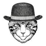 Cool wild cat Fashionable animal Hipster style Vintage illustration Image for tattoo, logo, emblem, badge design Stock Images