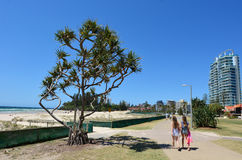 Coolangatta - Australie de la Gold Coast Queensland Photos stock