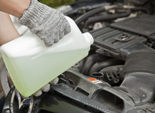 Coolant. Antifreeze, coolant check service diy Stock Photography
