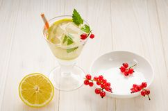 Cooled cocktail with mint, straws, a lemon and red currant/cooled cocktail with mint, straws, a lemon and red currant. Selective. Focus beverage glass drink stock images