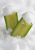 Cooled cucumber Stock Photography