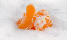 Cooled  tangerine 3 Royalty Free Stock Images