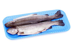 Cooled trouts. Royalty Free Stock Photos