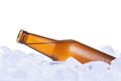 The cooler beer Stock Photos