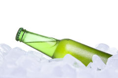 The cooler beer Royalty Free Stock Images