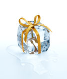Coolest gift Royalty Free Stock Photography