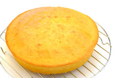 Cooling Cake on Rack Royalty Free Stock Photography