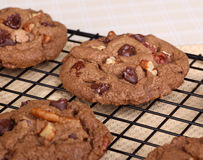 Cooling Chocolate Chip and Nut Cookies Stock Photos