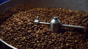 Cooling coffee beans after roasting. Roasting machine, close-up. Roasting machine, freshly roasted coffee beans rotating to cool of stock footage