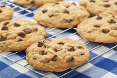 Cooling Cookies. Warm, golden brown, chocolate chip cookies cooling on a rack. Shallow depth of field stock image