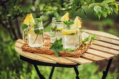 Cooling drink with lemon and mint Royalty Free Stock Photos