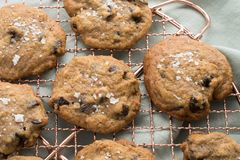 Cooling homemade chocolate chip cookies royalty free stock photos