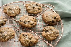 Cooling homemade chocolate chip cookies royalty free stock photo