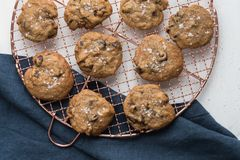 Cooling homemade chocolate chip cookies stock photo