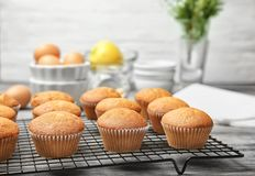 Cooling rack with delicious cupcakes on table Royalty Free Stock Photos