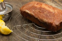 Cooling homemade lemon drizzle cake stock photography