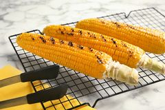 Cooling rack with grilled corn cobs. On marble background royalty free stock photos