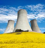 Cooling tower with golden flowering field of rapeseed Royalty Free Stock Photo