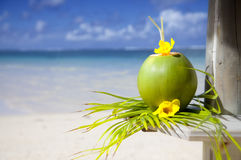 Beach of Mauritius Stock Photography