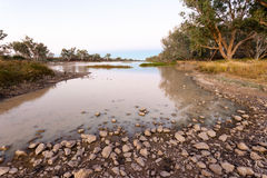 Cooper Creek in outback Australia. Royalty Free Stock Image