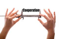 cooperação Imagem de Stock