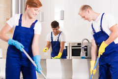 Cooperation in cleaning. Smooth cooperation of co-workers in cleaning kitchen stock photo