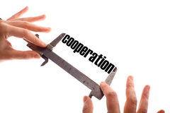 Cooperation Royalty Free Stock Photo