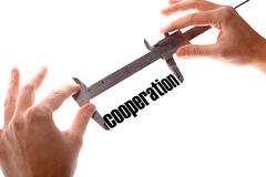Cooperation Stock Photos