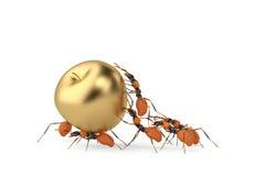 Cooperazione di lavoro di squadra della formica e mela dell'oro illustrazione 3D Fotografia Stock Libera da Diritti