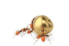 Cooperazione di lavoro di squadra della formica e mela dell'oro illustrazione 3D Fotografie Stock Libere da Diritti