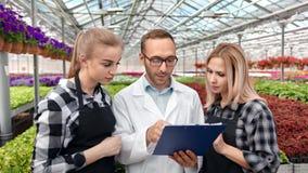 Coordenador agrícola masculino profissional e fazendeiro dois fêmea que discutem analisando plantas crescentes vídeos de arquivo