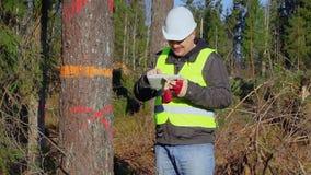 Coordenador contente da floresta com o PC da tabuleta perto da árvore filme