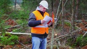 Coordenador da floresta que lança originais na floresta filme