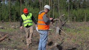 Coordenadores da floresta com originais na floresta destruída vídeos de arquivo