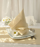 Coordinated decorative napkin Royalty Free Stock Photography