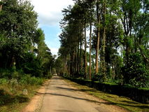 Coorg Hill Road Royalty Free Stock Image