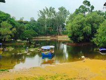 Coorg photography Royalty Free Stock Image