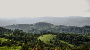 Coorg at it's greenest. A semi top angle shot of the green hills from top of the shooting point in Coorg Stock Photo