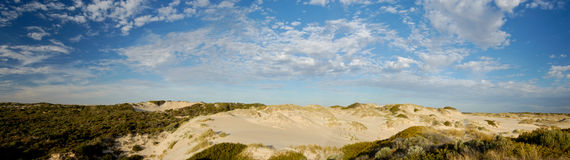 Coorong Panoramic. Stitched photos making panoramic of the sand dunes in the coorong Stock Photos