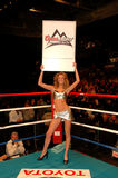 Coors Light Round Card Girl. Round card girl sponsored by Coors Light Beer at the Dunkin Donuts Center, Providence, RI Royalty Free Stock Image