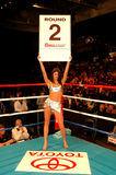 Coors Light Round Card girl. Beautiful boxing round card girl sponsored by Coors Light Stock Image