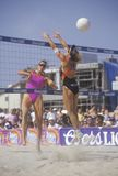 Coors Light Women's Professional Volleyball, Royalty Free Stock Images